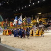 medieval times IL 10