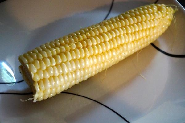 amaize corn 1