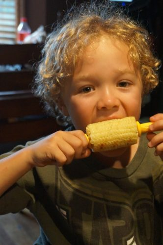amaize corn 4