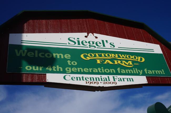 Siegel's Cottonwood Farm Pumpkin Fest#FallFun (Lockport, IL) {Review}