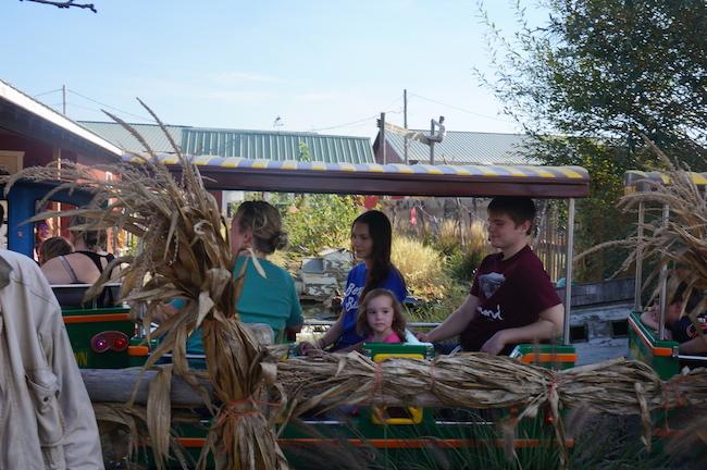 siegels cottonwood farm 9