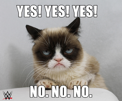Can WWE Make Grumpy Cat Smile? Find Out on 11/17!