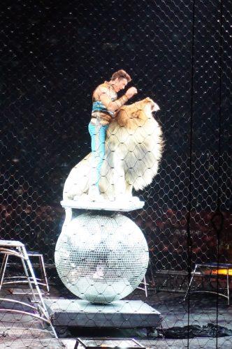 ringling bros barnum bailey circus 13