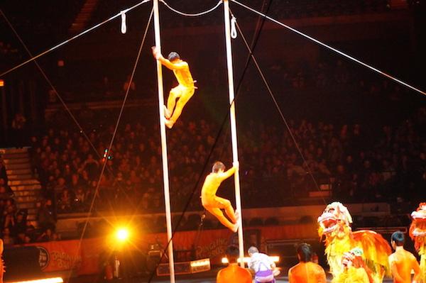 ringling bros barnum bailey circus 14