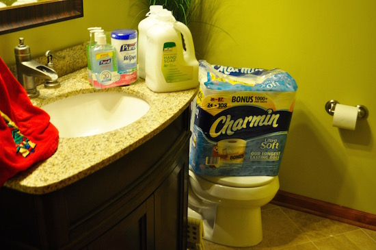 charmin toilet 1