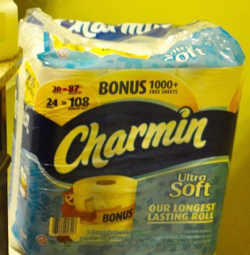 charmin toilet 2