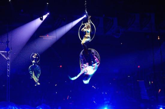 ringling circus xtreme 15