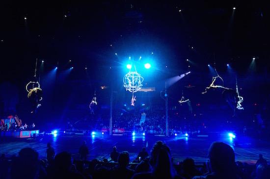 ringling circus xtreme 16