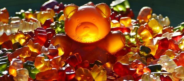giant-rubber-bear-1089618_640