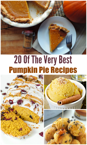 20 of the Very Best Pumpkin Pie Recipes