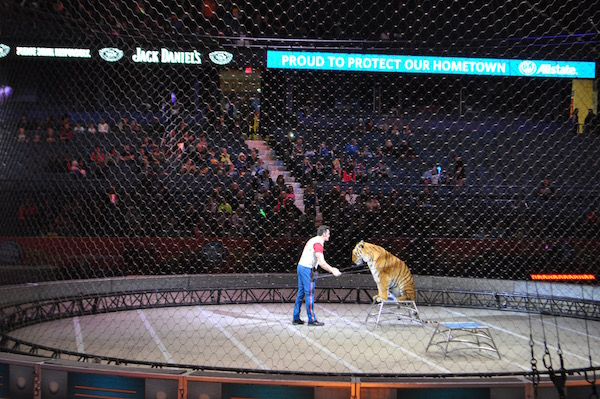 ringling-bros-out-of-world-2