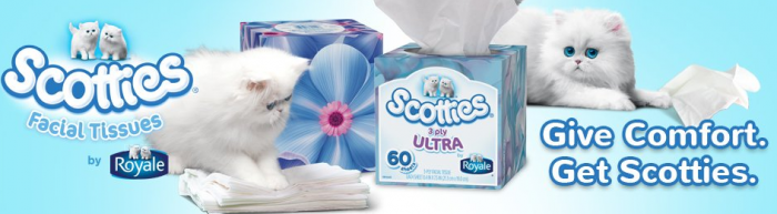 Scotties Facial Tissues Partnered to Help the Homeless