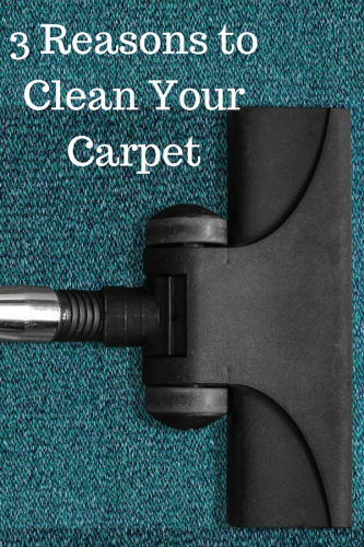 3 Reasons to Clean Your Carpet