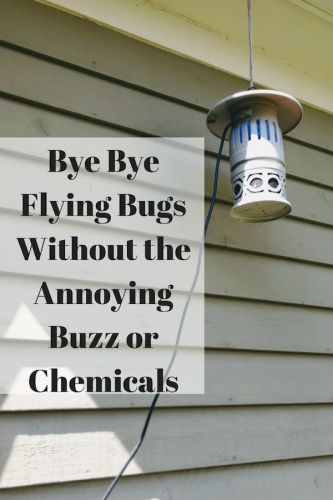 Bye Bye Flying Bugs Without the Annoying Buzz or Chemicals