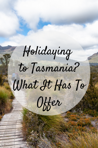 Holidaying To Tasmania? What It Has To Offer