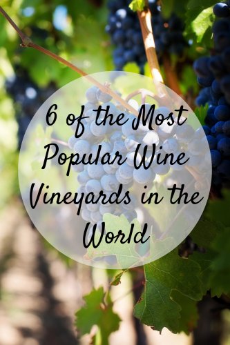 6 of the Most Popular Wine Vineyards in the World